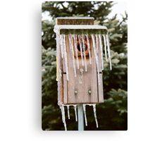 Icicle Birdhouse Canvas Print
