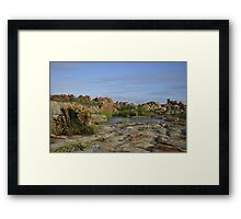 Oases next to the sea, Betty's Bay Framed Print
