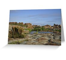 Oases next to the sea, Betty's Bay Greeting Card