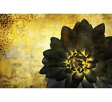 A Golden Heart Photographic Print