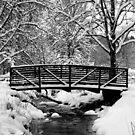 Snow Covered Foot Bridge by Jennifer Hulbert-Hortman