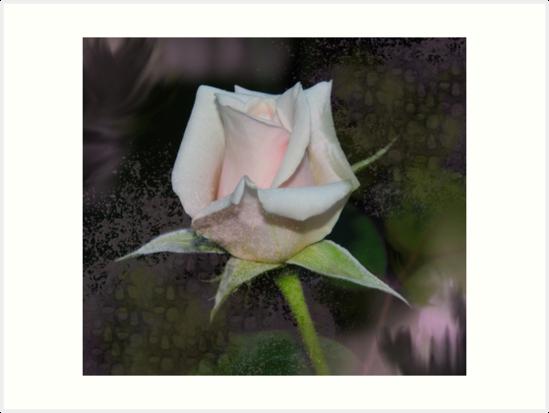 Rose Texture by WildestArt