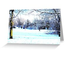 Beautiful Winter Scene Greeting Card