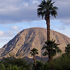 EISENHOWER PEAK-PALM DESERT, CALIFORNIA by JAYMILO