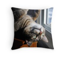 Looking Out Upside Down Throw Pillow