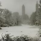 Central Park SnowStorm by Chris Lord