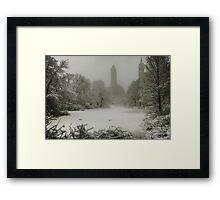 Central Park SnowStorm Framed Print