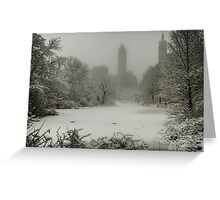 Central Park SnowStorm Greeting Card
