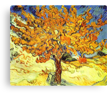 The Mulberry Tree, Vincent van Gogh Canvas Print