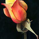 Rio Samba Rose by Ken Powers