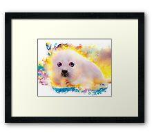 curious seal Framed Print
