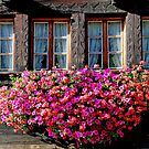How the Swiss decorate their homes by Arie Koene