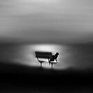 the dreamer by Amanda  Cass