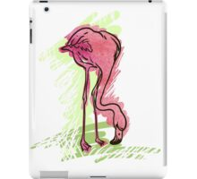 Painted flamingo bird iPad Case/Skin