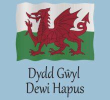 Dydd Gwyl Dewi Hapus - Happy St Davids Day Kids Clothes
