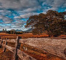 A dry land by GeoffSporne