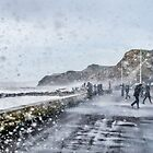 Stormy West Bay by Susie Peek
