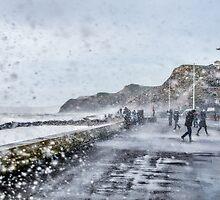 Stormy West Bay by Susie Peek