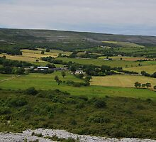 The Burren and it's Farmlands County Clare Ireland- by Sean  Carroll