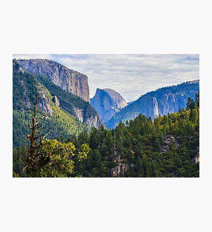 Yosemite Park Photographic Print