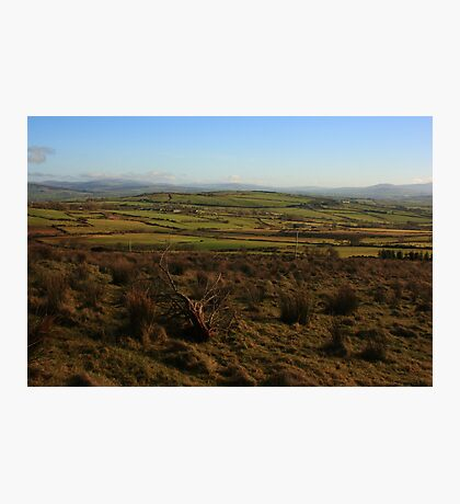On Fearn Hill Photographic Print
