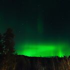 Aurora Borealis in Sorrisniva by KarenMcDonald