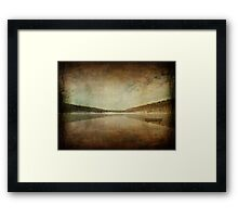 Ironic Loneliness Framed Print