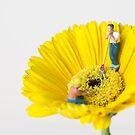 Tending the miniature garden by playwell