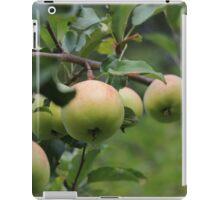Nanna Apples iPad Case/Skin