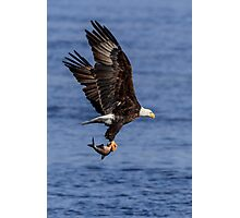Eagle in Flight over the Mississippi Photographic Print