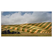 Tuscany art of  farmers I. Photographic Print