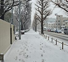 Winter in Japan by Fike2308