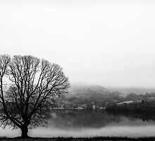 Grasmere in the Mist by Mark Hooper