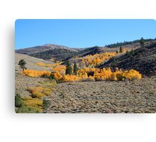 Autumn atop Peavine Mountain, Reno Nevada USA Canvas Print