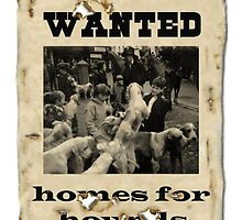 Wanted - home for hounds by missmoneypenny
