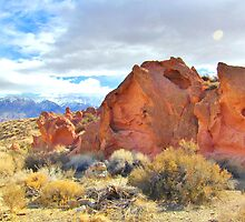 Red Rocks And Sand by marilyn diaz