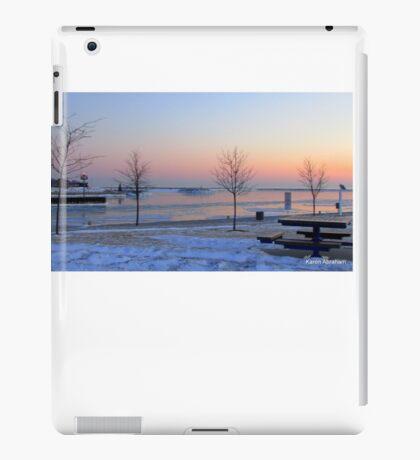 Sheboygan, Wi on 2-9-2014 iPad Case/Skin