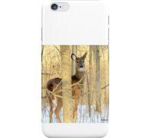 Deer in Maywood Park on 12-10-2013 in Sheboygan, Wisconsin iPhone Case/Skin