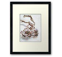 Garlic 7 Framed Print