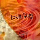 Love Bug by Scott Mitchell
