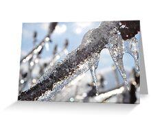 Frozen sumac Greeting Card