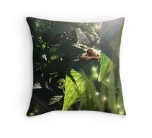 dreaming fae Throw Pillow