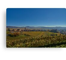 Burkheim, Kaiserstuhl - yet another view of the castle Canvas Print