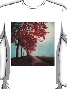 Autumn's Serenity T-Shirt