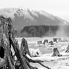 Rattlesnake Lake (B&W) by Jim Stiles