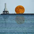Port Washington Lighthouse And Moon Fantasy by Timothy  Ruf