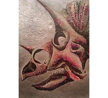 Triceratops Skull Study Photographic Print