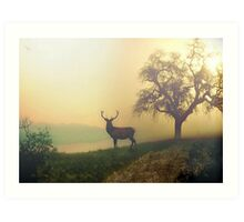 A Misty Morning Art Print