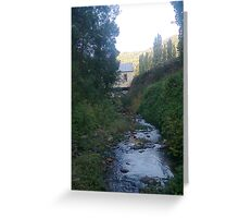 House on stilts over creek Greeting Card