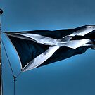 A Union Torn? by dgscotland